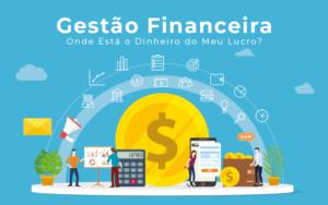 Gestao Financeira Onde Esta O Dinheiro Do Meu Lucro - Blog - Liz Assessoria Financeira